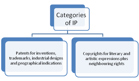 Intellectual property categories