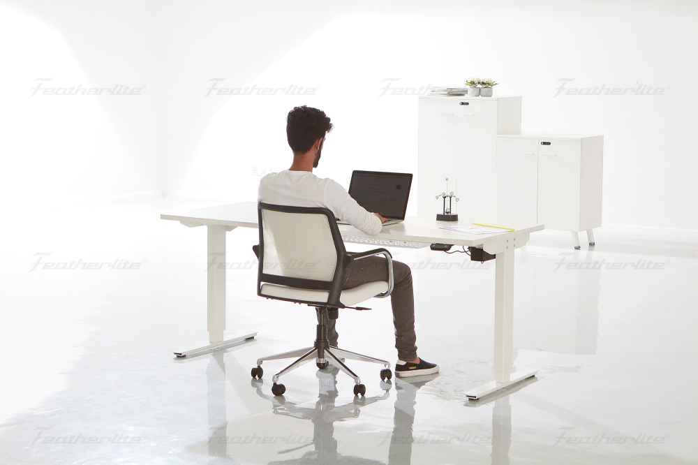 office furniture - Ergonomic height adjustable desk